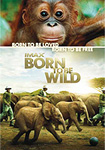 affiche du film Born to be wild